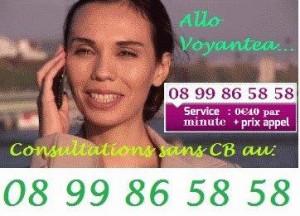 Voyantea 040